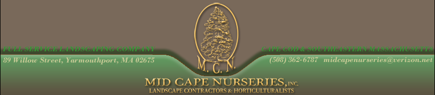 Mid Cape Nurseries Landscaping